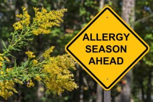Cleaning During Allergy Season